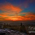 Sunrise At Bear Rocks In Dolly Sods by Dan Friend