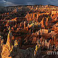 Sunrise At Bryce Canyon by Sandra Bronstein