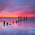 Sunrise At Deal Nj by Michael Ver Sprill