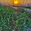 Sunrise At Myrtle Beach by Alex Grichenko