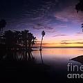 Sunrise At San Jose Del Cabo by John Harmon