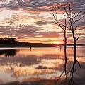 Sunrise At Stockdale by Scott Bean