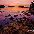 Sunrise At Tenants Harbor by Jim Block