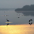 Sunrise Over The Hula Valley Israel 1 by Dubi Roman