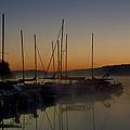 Sunrise At The Marina - Lake Nockamixon State Park by Bill Cannon