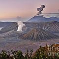 sunrise at vulcano Bromo with sea of sand vulcano Semeru with eruption Java Indonesia by Juergen Ritterbach