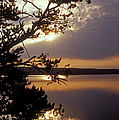 Sunrise At Yellowstone Lake by Sandra Bronstein