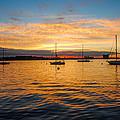 Sunrise Boston  by Francisco Ponce