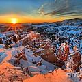 Sunrise Delight by Adam Jewell