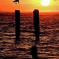 Sunrise Descent - Outer Banks Ocracoke by Dan Carmichael