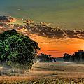Sunrise Fog by Reid Callaway