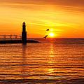 Sunrise Frolic by Bill Pevlor