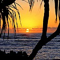 Sunrise Fuji Beach Kauai by Mary Deal
