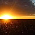 Sunrise by Gonzalo Martinez