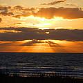 Sunrise In Florida by Lyndall Hamlett