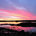 Sunrise In Maine by Glenn Gordon