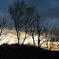 Sunrise In Murrysville by Rhonda Watson