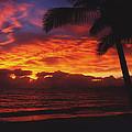 Sunrise In Queensland 2 by Ellen Henneke