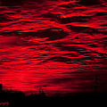Sunrise In Red by Photos By  Cassandra
