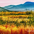 Sunrise In Verde Valley Arizona by Bob and Nadine Johnston