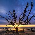 Sunrise Jewel by Debra and Dave Vanderlaan