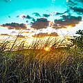 Sunrise  by Josh Scanlon