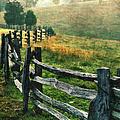 Sunrise Meadow - Blue Ridge Parkway II by Dan Carmichael