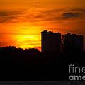 Sunrise by Meg Rousher