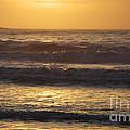 Sunrise Newport Ri Winter 2013 by Michael Mooney