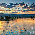 Sunrise On The North Payette River by Robert Bales