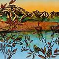 Sunrise On Willows by Carolyn Doe