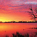 Sunrise Over Coongee Lakes by Paul Whitehead
