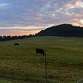 Sunrise Over Farm by Sharon Popek