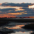 Sunrise Over Point Pelee Provincial Park by Inspired Nature Photography Fine Art Photography