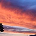 Sunrise by Pamela Walton