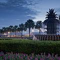 Sunrise Pineapple Fountain by E Karl Braun