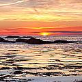 Sunrise Silhouettes Odiorne Point by Jeff Sinon