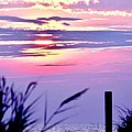 Sunrise Through The Dunes by Kim Bemis