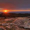Sunrise View From Cadillac Mountain by Oscar Gutierrez