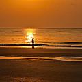 Sunrise Walk by Diana Powell