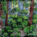 Suns Rays - Forest - Steel Engraving by Barbara Griffin