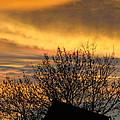 Sunset 4 by Becca Buecher