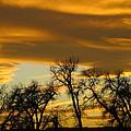 Sunset 7 by Becca Buecher