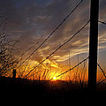Sunset Along The Fence Yellow Red Orange Fine Art Photography Print  by Jerry Cowart