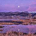 Sunset And Moonrise At Farmers Pond by Cat Connor