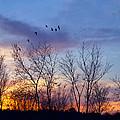 Sunset At Black Burn by Season Bonner