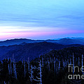 Sunset At Clingman's Dome by Nancy Mueller