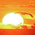 Sunset At Elizabeth Bay by Kike Calvo
