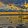 Sunset At Lake Wallenpaupack Pa by Zbigniew Krol