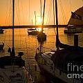 Sunset At Morro Bay by Timothy Hacker